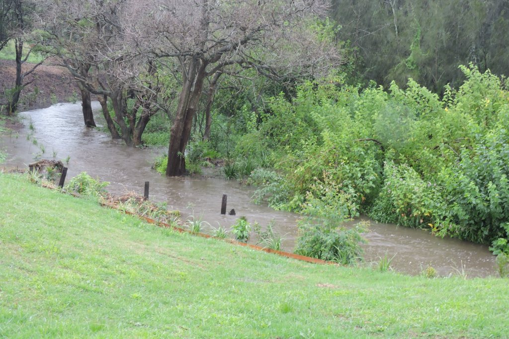 20/2/15-Creek starting to rise-Lot 168