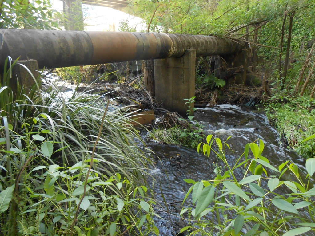 22/9/15 - Debris caught on pipe supports near bridge.