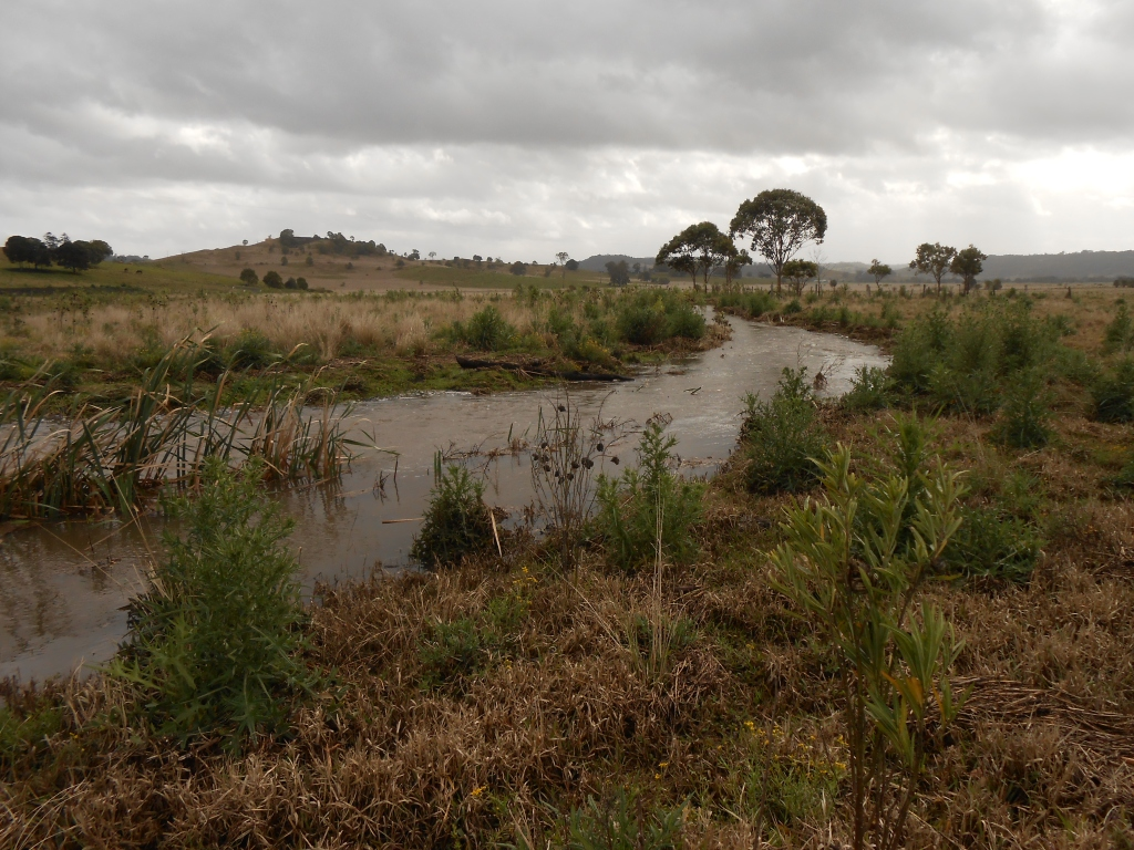 The creek after crossing Rifle Range Road.