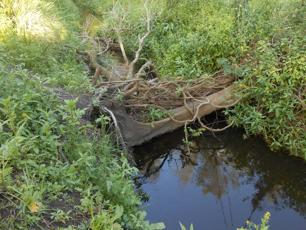 22/9/15 -Large tree fallen across creek and blocking debris.